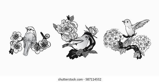 Set hand drawn vector set birds and butterflies background peonies flower, cherry blossoms.