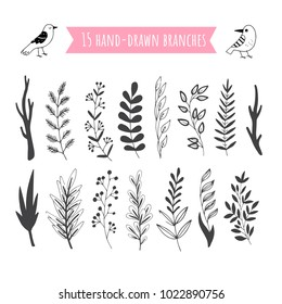 Set of hand drawn vector branches with leaves, flowers, berries. Design elements for invitations, greeting cards, quotes, blogs, posters, wedding frames.
