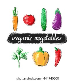 Set of hand drawn vegetables. Carrot, tomato,cucumber, eggplant, dill, pepper, chile