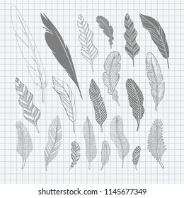 Set of hand-drawing black feathers. Vector illustration