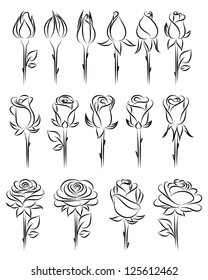 Rose Dessin Images Stock Photos Vectors Shutterstock