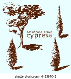 Set of hand-drawn cypress. Sketch design.