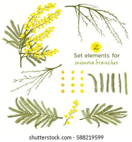 Set of hand-drawn elements for branches of mimosa. A good idea for your design, poster, greeting card, web banner. Vector illustration