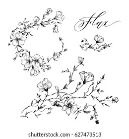 Set of hand-drawn flowers. Flax for rustic wedding invitations, greeting cards, packages, T-shirts, labels and other.