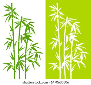Set Of Handdrawn Green Bamboo Plant Green And White