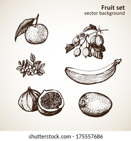 Set of hand-made graphics fruit.  Illustration for greeting cards, invitations, and other printing and web projects.