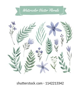 Set of handpainted watercolor vector flowers and leaves.