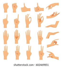 Set of hands in different gestures emotions palm ,hand back, view and signs One to ten on white background isolated vector illustration