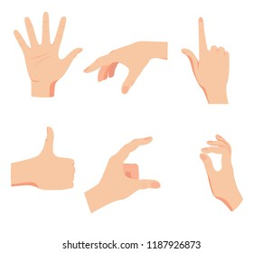 set of hands, gestures and symbols isolated on white vector background, flat style