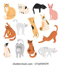Set of happy cats, stickers of funny playing pets, sleeping, lying, standing and washing, hand drawn vector illustration in flat cartoon style, pastel colors, isolated on white background.