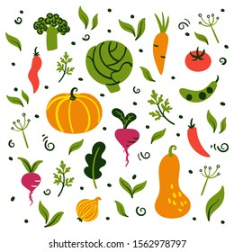 Set of harvest vegetables with leaves in hand drawn flat style. Colorful icons isolated on white background. Cute print in bright colors.