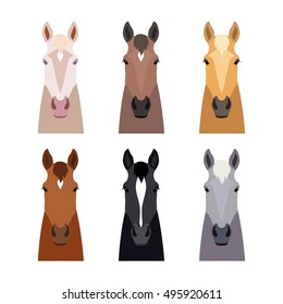 set of head horse isolated on white background. Different breeds of horses and color.