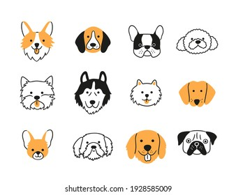 Set of heads of different breeds dogs. Corgi, Pug, Chihuahua, Terrier, Retriever, Dachshund, Poodle. Collection of dog faces Hand drawn isolated vector illustration in doodle style on white background