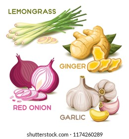 Set of herb isolated vector with lemongrass, ginger, red onion and garlic
