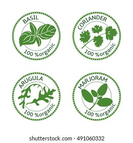 Set of herbs labels. 100% organic. Greenery collection. Vector illustration. Basil, arugula, marjoram, coriander.