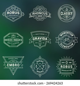 Set of Hipster Vintage Labels, Logotypes, Badges for Your Business. Thin Line Design Template