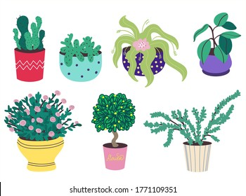 A set of home plants in pots. Cacti, ficus, rose, bonsai. Decorative flowers and greenery in flower pots.Gardening. Flower pots isolated on a white background.Flat vector stock illustration