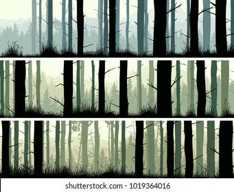 Set of horizontal banners of many pine trunks and grass in coniferous forest.