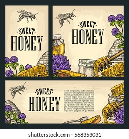 Set horizontal, vertical and square and posters with honey, jar, spoon, bee. Isolated on the beige background. Vector color hand drawn vintage engraving illustration for label, menu