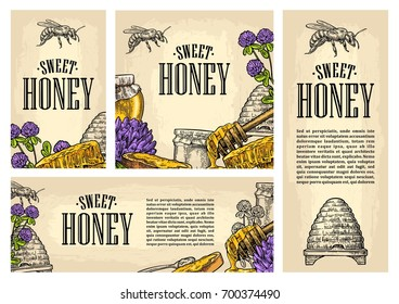 Set horizontal, vertical and square and posters with honey, honeycomb, jar, spoon, bee. Isolated on the beige background. Vector color hand drawn vintage engraving illustration for label, menu