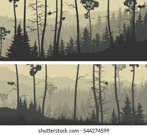Set of horizontal wide banners coniferous forest with trunks of pine trees and hills.