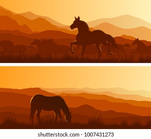 Set of horizontal wide banners of wild horses grazing in meadows at sunset.