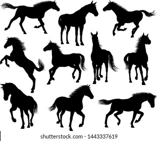A set of horse animal detailed silhouette graphics