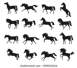 Set with horse silhouettes. Vector illustration. Horses for logos. Vector isolated illustration.