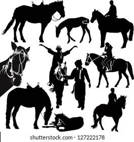 set horses isolated on white background