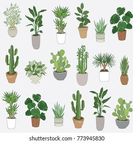 Set of house indoor plant vector cartoon doodle seamless pattern.