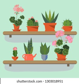 Set of house plants in pots. Collection of beautiful suculents on the shelfs. Flat colorful vector aloe, cacti, geranium