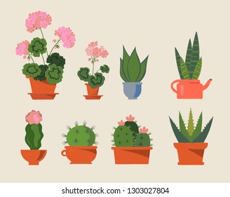 Set of house plants in pots. Collection of beautiful suculents and flowers. Flat colorful vector aloe, cacti, geranium