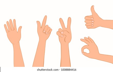 Set of human hands. Signals and signs. Collection of gestures greeting, show direction, victory sign, well done, good job, ok, all right. Vector flat icons.