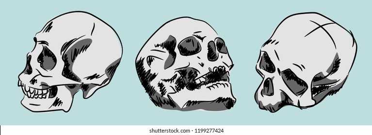 Set of human skulls, hand-drawn