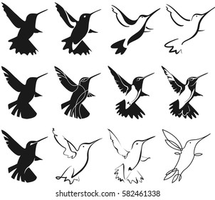 set of hummingbirds for your design, isolated objects, vector illustration