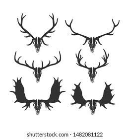 Set of hunter trophy. Deers' skulls and hornes isolated on white. Vector illustration.