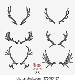 Set of hunting trophy, horns.
