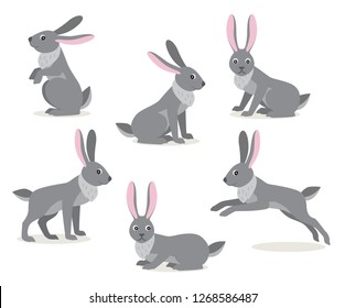 Set of icon cute gray hare in different pose isolated on white background, forest, woodland animal, vector illustration in flat style