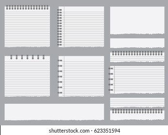 Set of illustrated notebook pages
