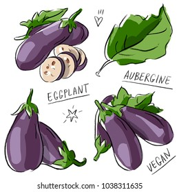 Set illustration with eggplant aubergine