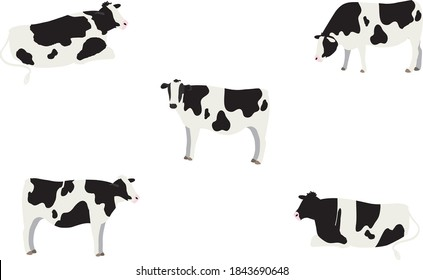 Set of illustrations of 5 cows