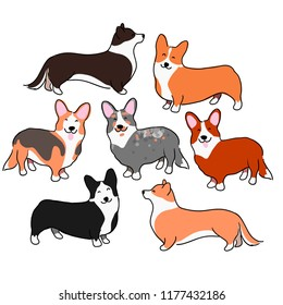 A set of illustrations of dogs. Dogs of the breed welsh corgi cardigan and welsh corgi pembroke. Lovely illustrations of decorative dogs. Milie saaki look like a chanterelle.
