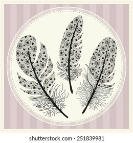 Set of illustrations with feathers. Vintage lace.