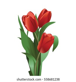 A set of illustrations for website - vector icons flowers. Element 9 tulips red flowers leaves bud bouquet present plant gift stem