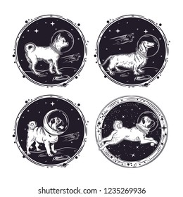 A set of images of dogs astronauts. Pug, Dachshund and Chihuahua