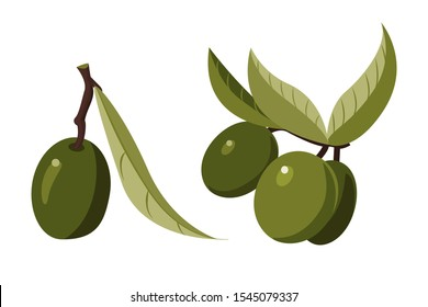 set of images of olives: single olive and olives on a branch. Cartoon style.
