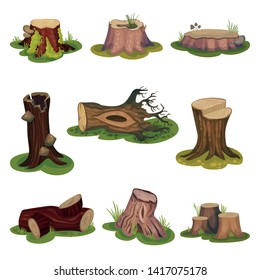 Set of images of stumps and snags. Vector illustration on white background.