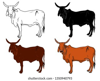 Indian Cow Images, Stock Photos & Vectors | Shutterstock