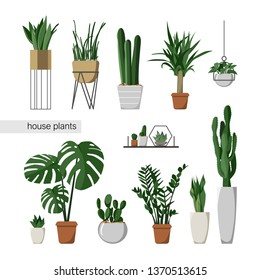 A set of indoor plants. Home interior. Houseplants. Flat style vector illustration.