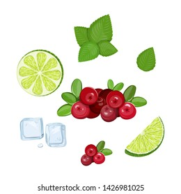A set of ingredients for making a mojito coctail.